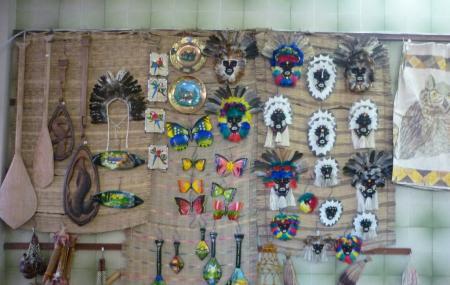 Museu Do Indio Image