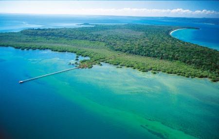 Moreton Bay Image