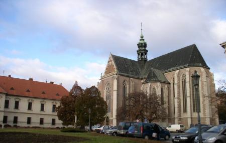Mendel Museum Image