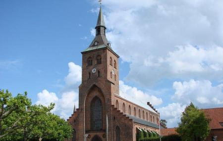 Odense Cathedral Image