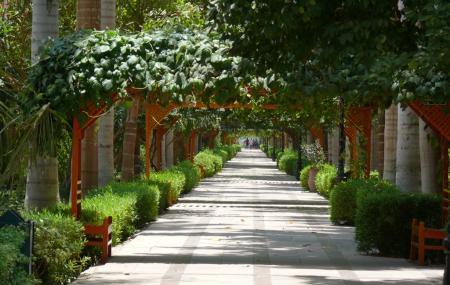 Aswan Botanical Garden Image