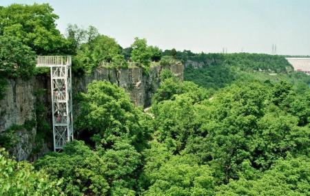 Niagara Glen Nature Reserve Image