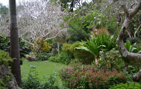 Andromeda Botanic Gardens Image