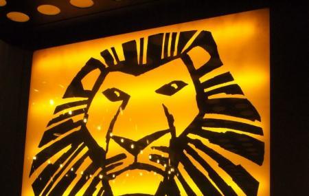 The Lion Image