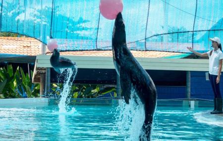 Samui Aquarium And Tiger Zoo Image