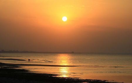 Qurum Beach Image
