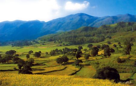 Araku Valley Image