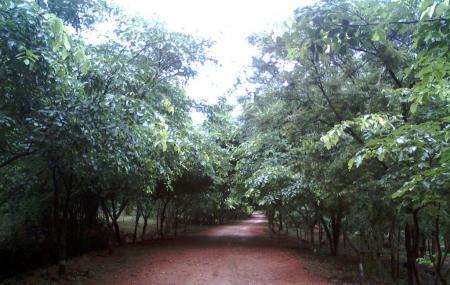 Kambalkonda Wildlife Sanctuary Image