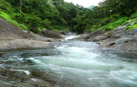 Kozhippara Water Falls Image