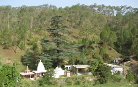 Dwarahat Village Image