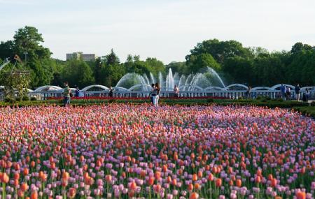 Gorky Park Image