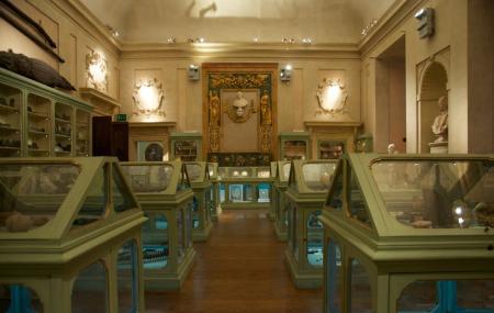 Museo Di Palazzo Poggi Image
