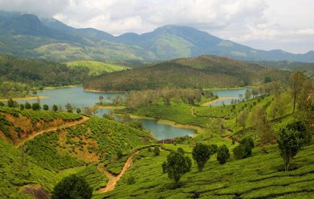 Yelagiri Hills Image