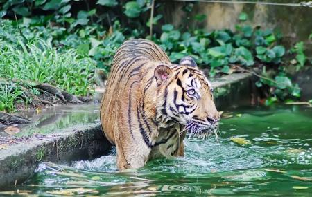 Zoo Negara Image