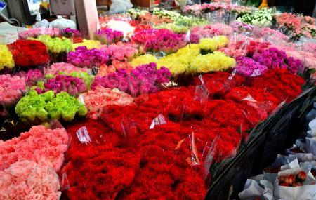 Pak Khlong Flower Market Image