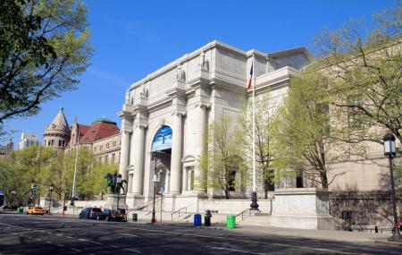 American Museum Of Natural History Image