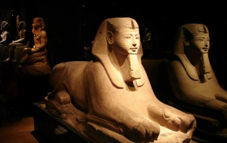 Egyptian Museum Of Turin Image