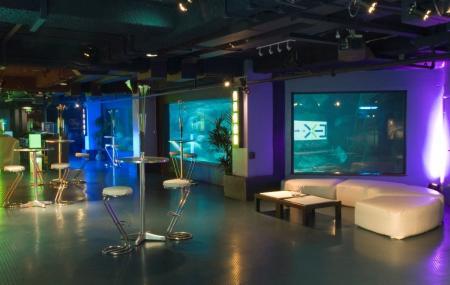 Club Aquarium Image