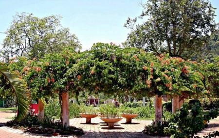 Penang Botanic Gardens Image