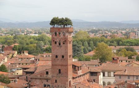 Guinigi Tower Image
