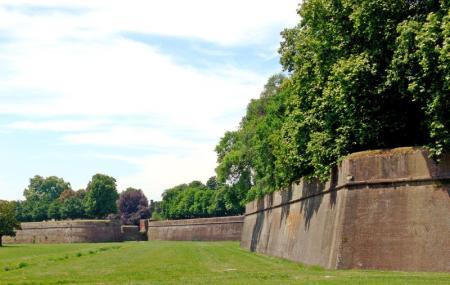 Le Mura Di Lucca Image