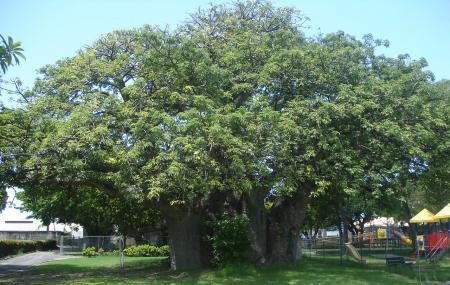 Queen Park Image