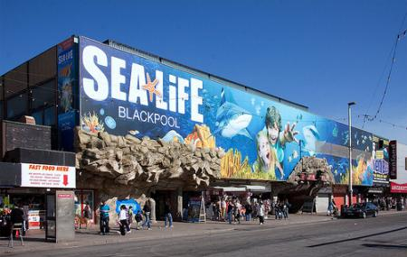 Sea Life Blackpool Image
