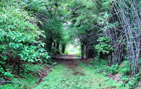 Dumna Nature Reserve Image