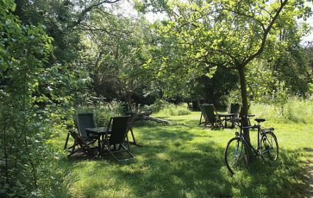 The Orchard Tea Garden Image