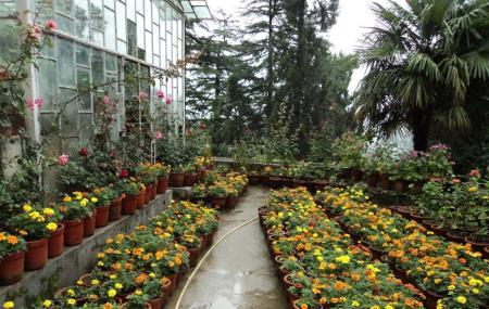 Company Garden Image