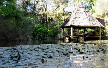 Haller Park Image