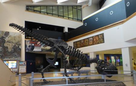 New Mexico Museum Of Natural History And Science Image