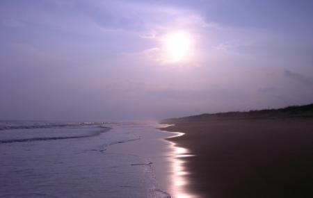 Chandrabhaga Sea Beach Image