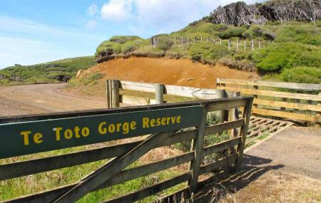 Te Toto Gorge Image