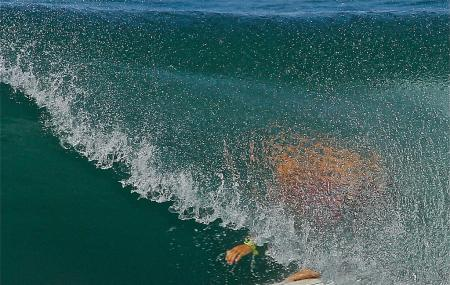 Del Mar Surf Camp Image