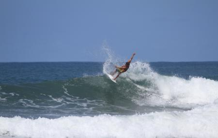 Dominical Surf Lessons Image