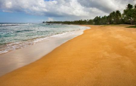 Dorado Beach Image