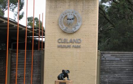 Cleland Wildlife Park Image