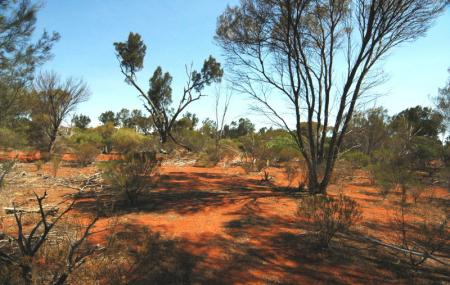 Goongarrie National Park Image