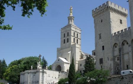 Avignon Cathedral Image