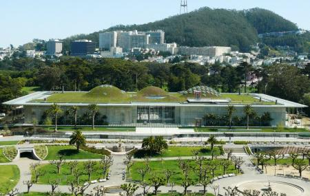 California Academy Of Sciences Image