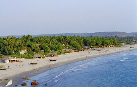 Arambol Beach Image