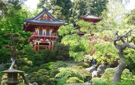 Japanese Tea Garden Image