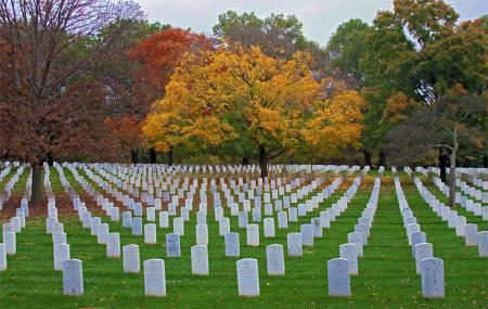Arlington National Cemetery Image