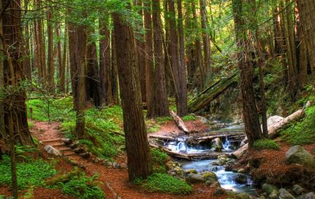 Limekiln State Park Image