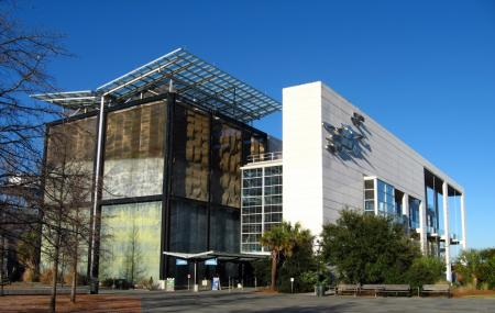 South Carolina Aquarium Image