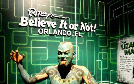 Ripleys Believe It Or Not - Orlando Image