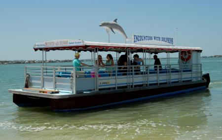 Encounters With Dolphins Image