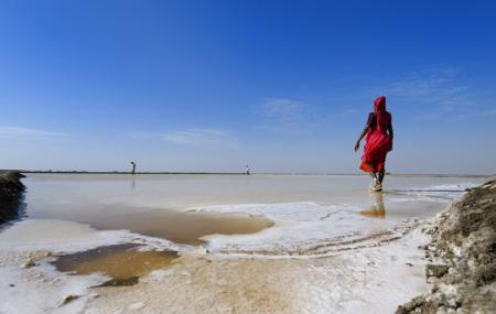Great Rann Of Kutch Image