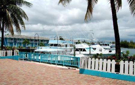 Port Lucaya Marina Image